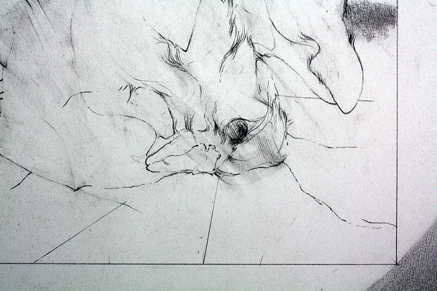 """Title The Phoenix Date 1969 Dimensions 17.5 x 23.5 in. Signature """"Camblin"""" Gallery Location Available for viewing State Original pencil Rights © The Camblin Gallery"""