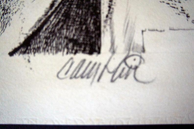 Rider Signature